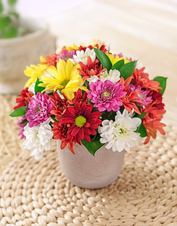 Mixed_Daisies_in_a_Pottery_Vase_Petite
