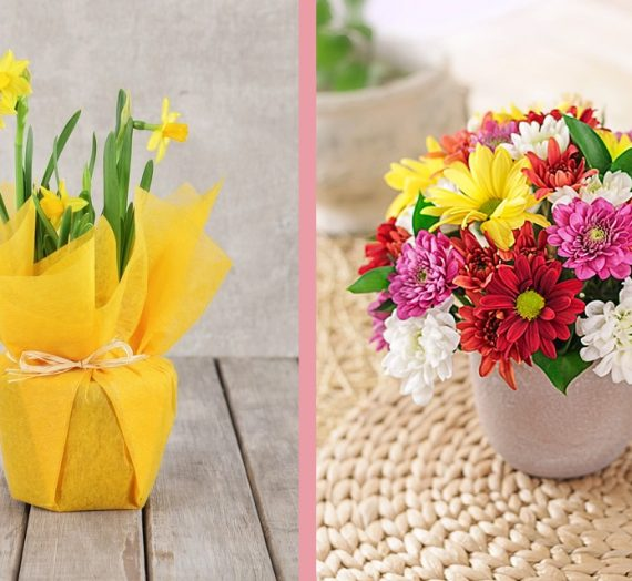Spring Flowers Giveaway!